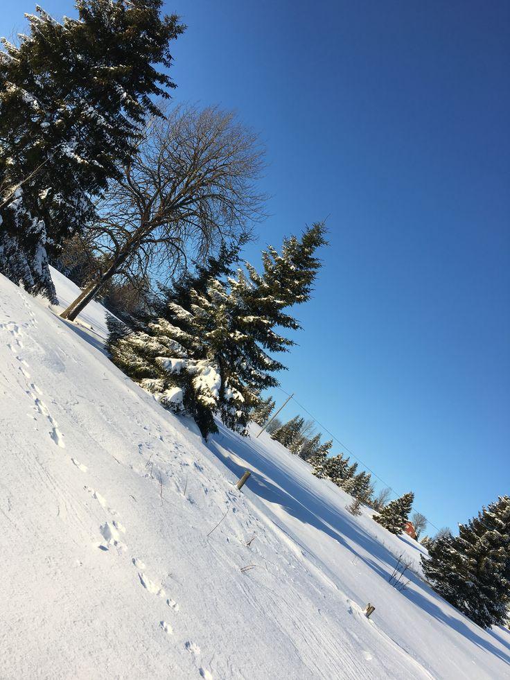 Vinterdag i Veldre Foto Hege Wølner