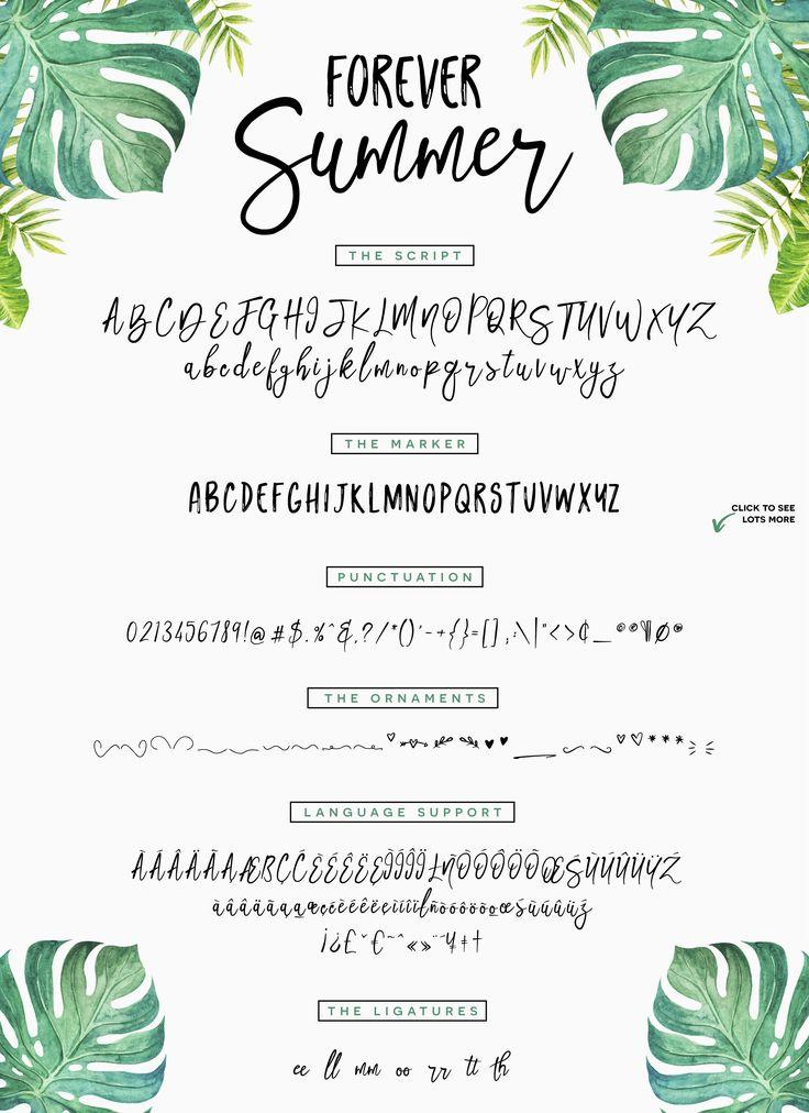 Forever Summer + Extras by Flycatcher Design on @creativemarket