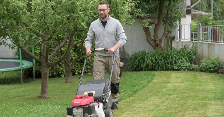Ihr Rasen ist nur noch eine lückige Moos- und Unkrautfläche? Kein Problem: Mit…