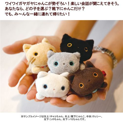Japanese Plush Toys : Tabby mini kutusita nyanko cat plush toy san japan