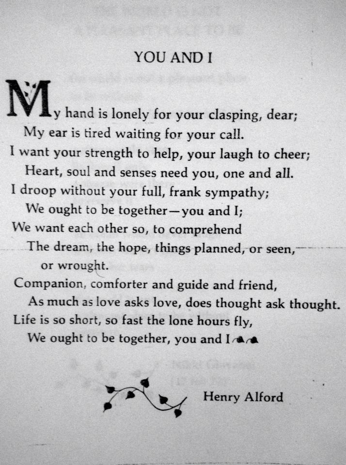 Companion, comforter, a guide and a friend.