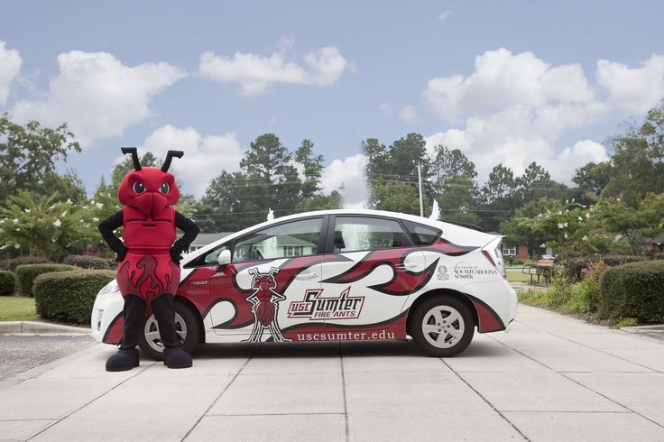 University of South Carolina - Fire Ant  Check out more at www.loonietimes.com