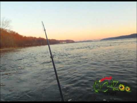 1000 images about susquehanna river on pinterest for Susquehanna river fishing