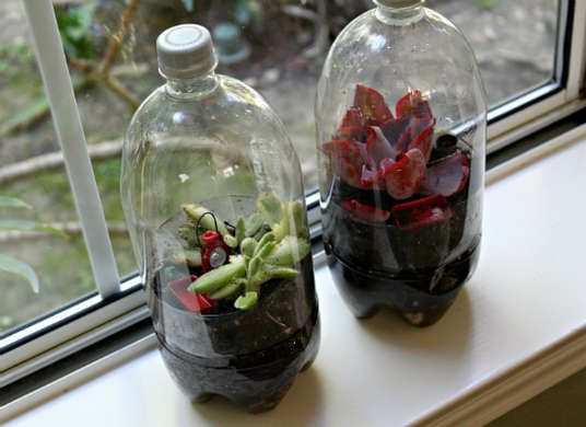 Bottle Terrarium - How to Build a Terrarium From the recycling bin to the windowsill, a recycled two-liter bottle can be transformed into a miniature rain forest with a layer of gravel, charcoal, soil, and small tropical plants. As seen on Juggling with Kids, this recycling craft makes a great rainy day project for both kids and kids at heart.