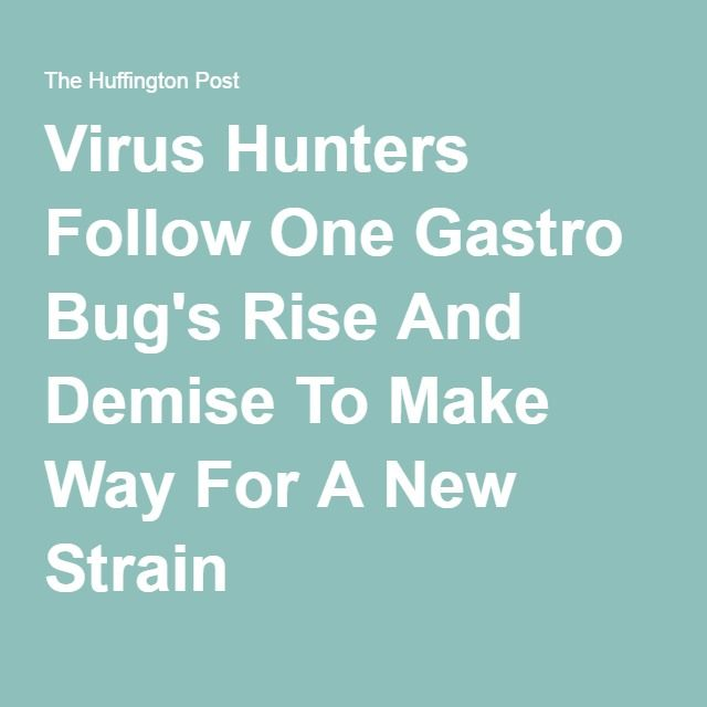 Virus Hunters Follow One Gastro Bug's Rise And Demise To Make Way For A New Strain