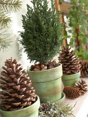 "Play with pinecones Pinecones offer easy, versatile holiday decorating. Gather them from your yard or buy bags of them at a crafts store. For this mantel, we ""planted"" larger cones in clay pots painted a soft green. Tiny pinecones cover the soil of a planted mini evergreen. We scattered more pinecones across the mantel to continue the naturalistic theme."