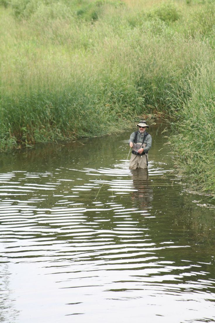 29 best images about places to go when staying with us on for Wisconsin trout fishing