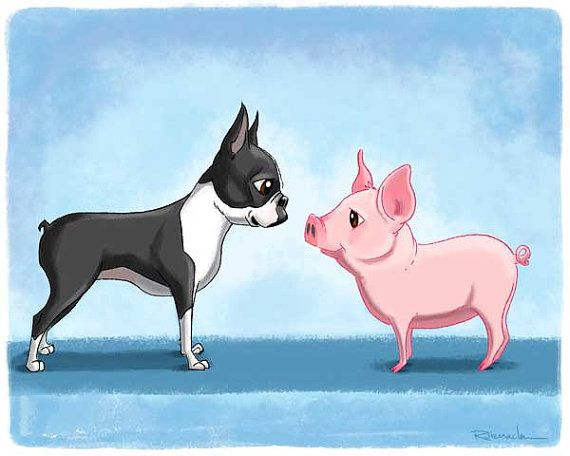 Boston terrier art boston terrier art print boston by rubenacker