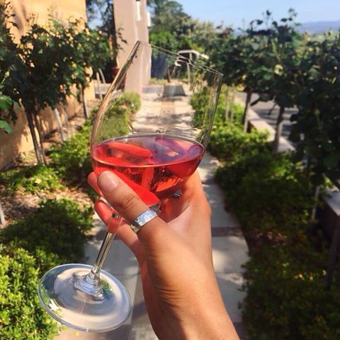Balgownie Estate New Rose 2015