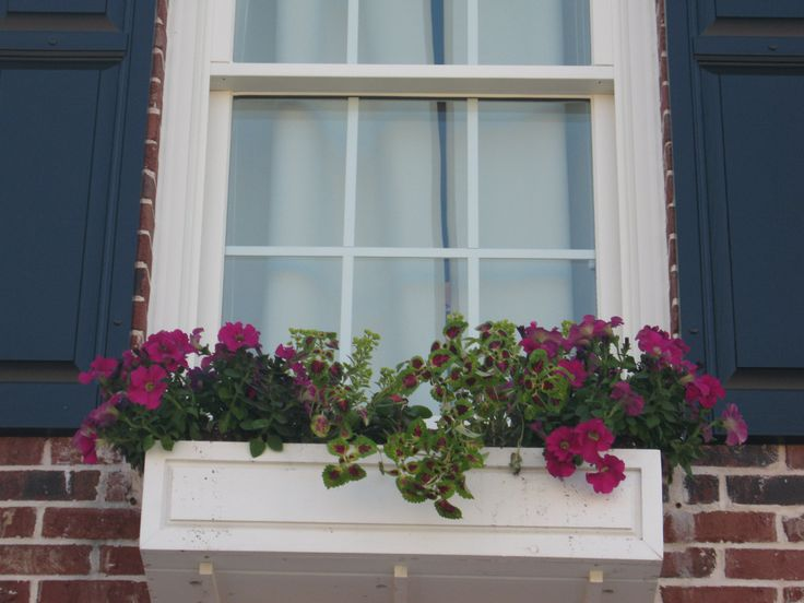 Best 25 Wooden Window Boxes Ideas Only On Pinterest