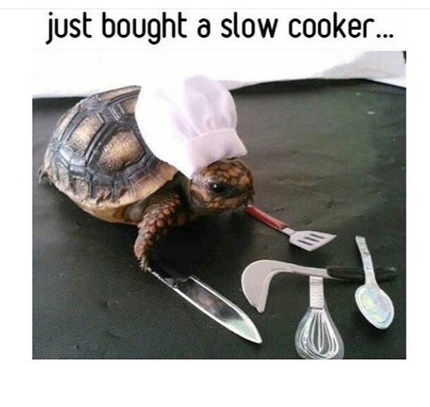 420 Best Food Humor Images On Pinterest Food Humor Food