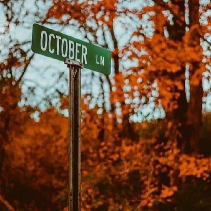 Halloween 2020 Utc Instagram post by HalloweenHollowHaunts • Aug 17, 2020 at 7:02pm