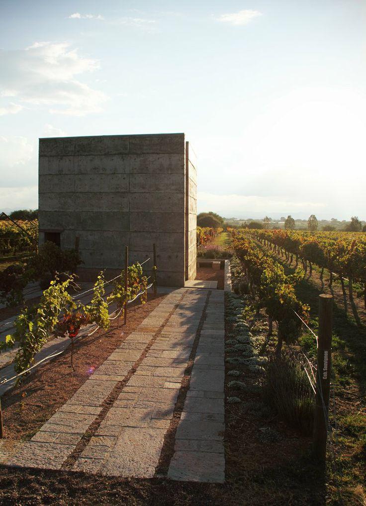 Vinícola Cuna de Tierra, Cuna de Tierra winery. Location: Guanajuato, Mexico;  firm: Centro de Colaboración Arquitectónica-Bernardo Quinzaños Oria; year: 2013