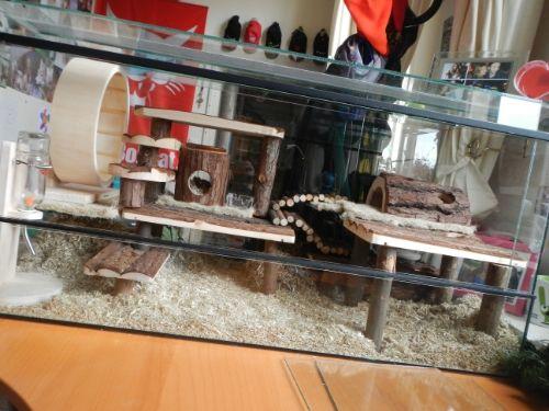 Natural hamster cage, wood