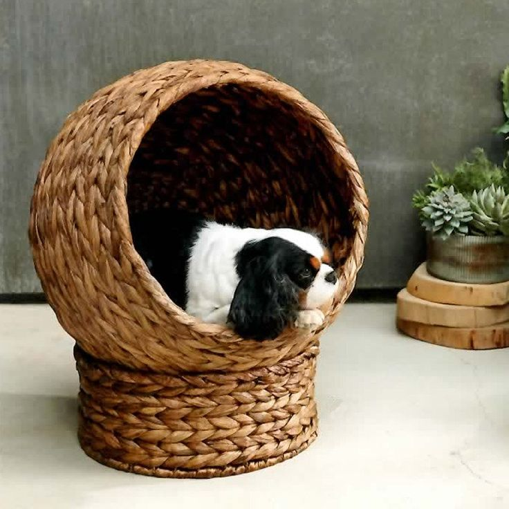 Treat your pets to the ultimate cozy abode. Cats and small dogs nestle into a cocoon of banana leaf woven over a structured metal frame. Includes a round ocean blue jute cushion that reverses to natur