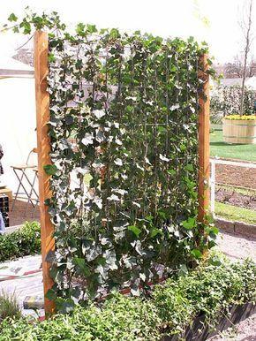 Växtskärmar som skyddar mot insyn blir ett vanligare inslag kring våra uteplatser.
