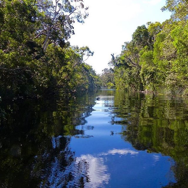 Cruising through the magnificent waterways of the Noosa Everglades - also known as the river of mirrors! The Everglades are rich in flora and fauna, and have remained relatively unchanged for centuries. A must see when visiting Noosa!