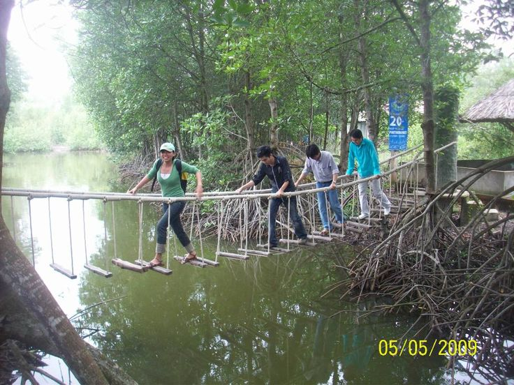 Can Gio & Vam Sat Mangrove Forest Day Tour | Cu Chi Tunnels Tour - Mekong Delta Tours