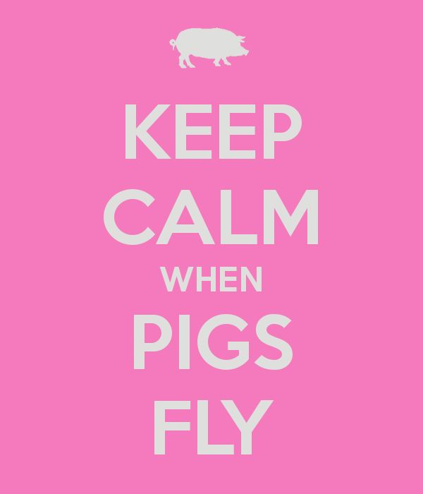 Keep Calm When Pigs Fly Keep Calm And Pinterest Calming