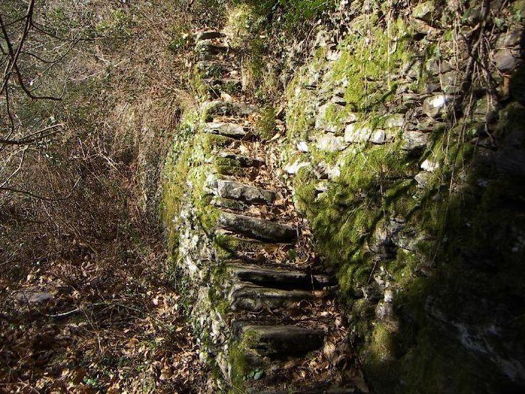 Escalier en pierre seche pris dans le bati du mur.JPG