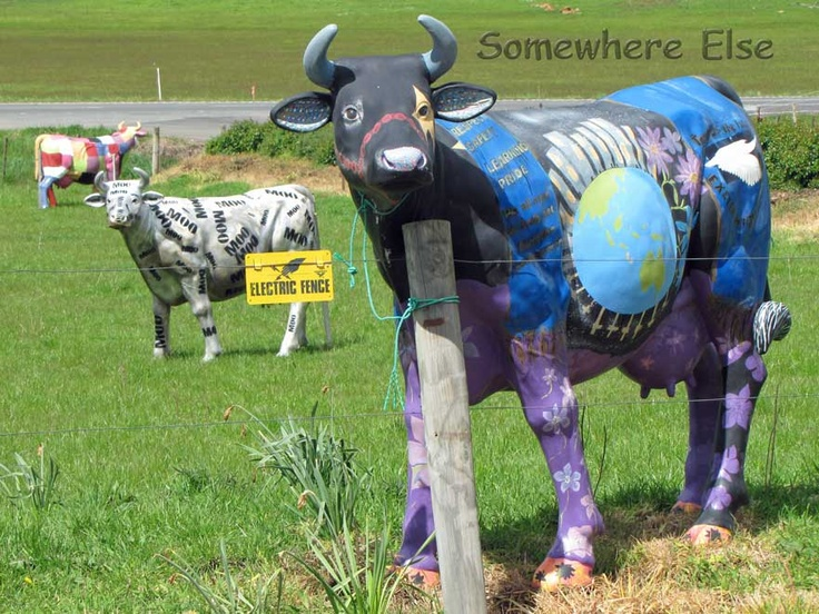 The colourful cows at the Ashgrove Cheese factory, Tasmania... I must visit here one day and say hi to Georgiegirl's cousins!