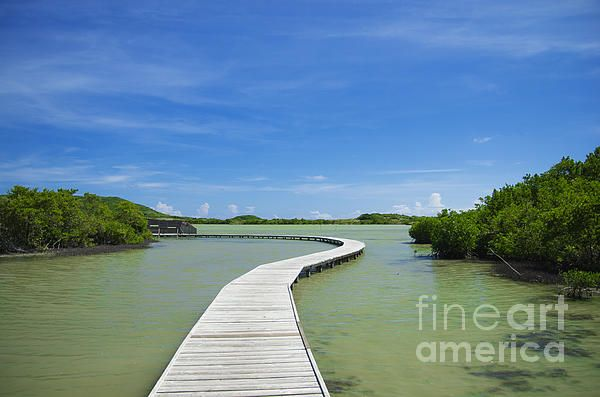 """Road On Lake. Wooden road on the lake on tropical island. From """"Caribbean"""" photo prints collection. #road #lake #tropical #caribbean #landscape #nature #travel #originalcontent"""