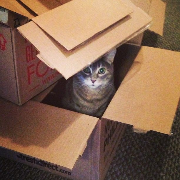 Forgot to unpack a box!