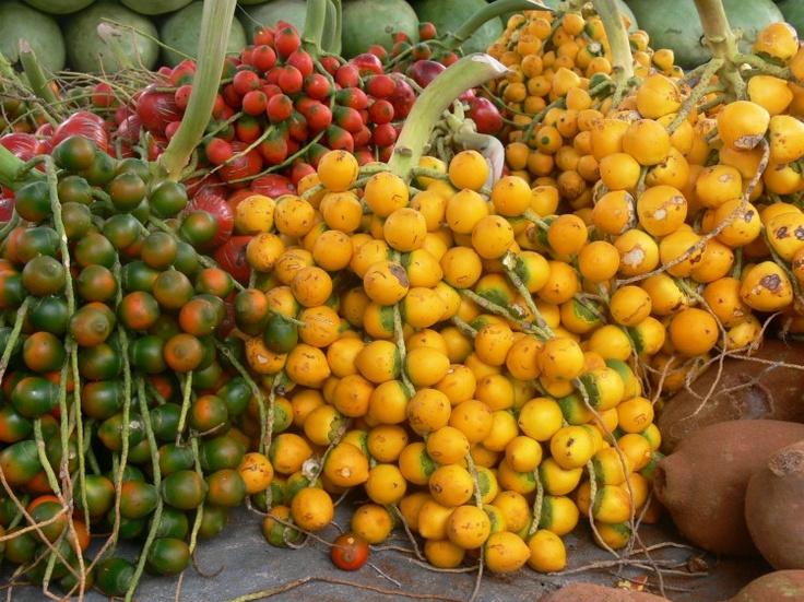 Pupunha - palm fruit from Brazil.