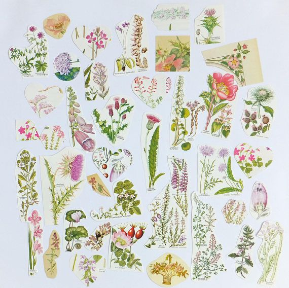 Pink Flowers Paper pack Floral themed paper ephemera pack