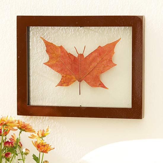 Trim out a butterfly head from the top point of a  maple leaf. Press the leaf until dry, spray with varnish to preserve it's color. Mount in a floating frame.