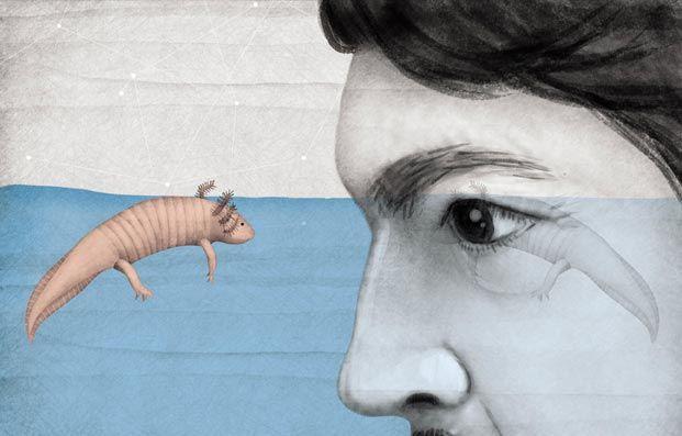 axolotl julio cortázar - Buscar con Google