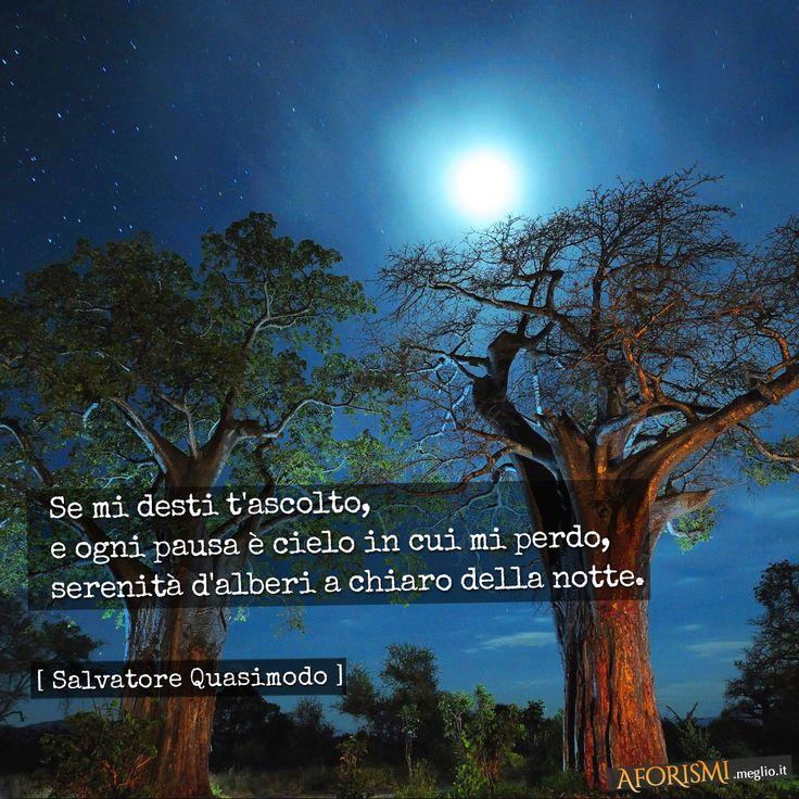 Se mi desti t'ascolto,   e ogni pausa è cielo in cui mi perdo,   serenità d'alberi a chiaro della notte.  [Tratta da: Acque e terre]