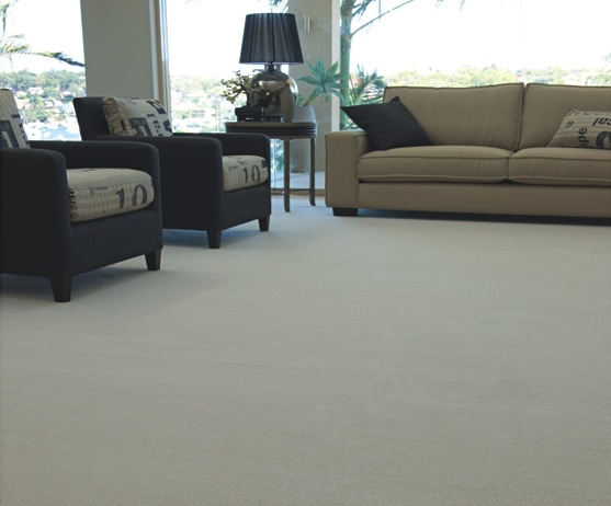 1000 Images About Smartstrand The Rhino Carpet On Pinterest
