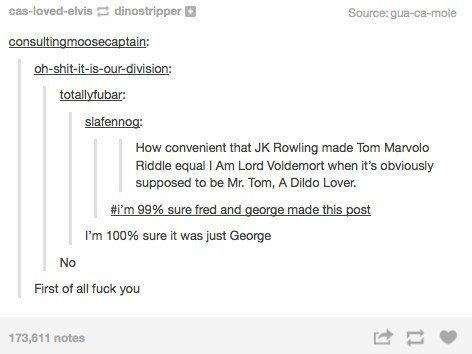 Some people really enjoy sexifying Harry Potter. Tom Marvolo as a dildo lover does seem probable.