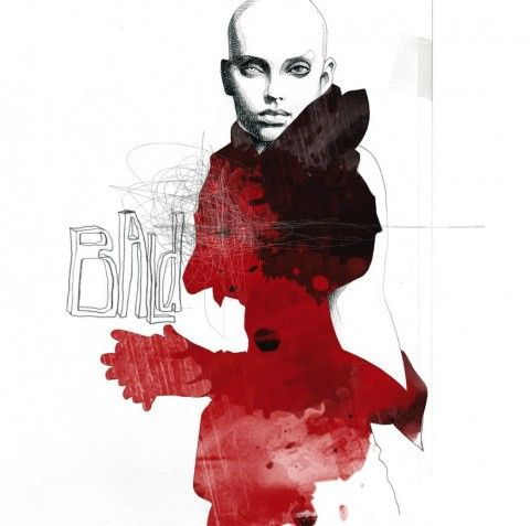 Illustration - David Despau - The Mushroom Company