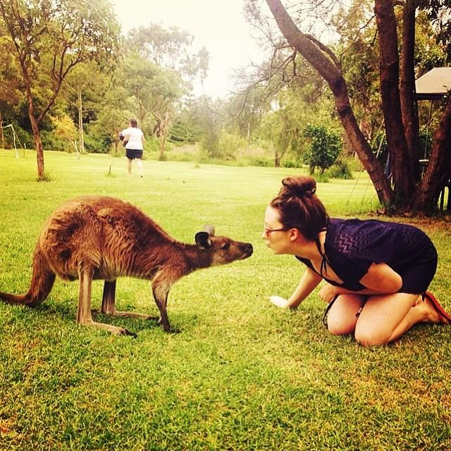 We love spending time at UltimateOz basecamp with Josie the Kangaroo!