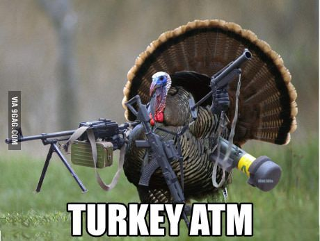 Turkey At The Moment