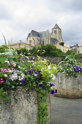 """Abbaye Royale Notre-Dame de Celles-sur-Belle , Celles a une origine toute monastique: synonyme de demeure de religieux. Celles existait sûrement en 1095 car il est dit """"En 1095 les miracles commencent à se produire à Celles"""". Le culte de la Vierge n'y était donc pas inauguré depuis très longtemps. Il n'était donc pas plus ancien que le monastère. Les miracles de Notre-Dame de Celles continuent, au moins l'espace de 30 ans, puisque le chroniqueur déclare en 1126 qu'ils ont commencé en 1095."""