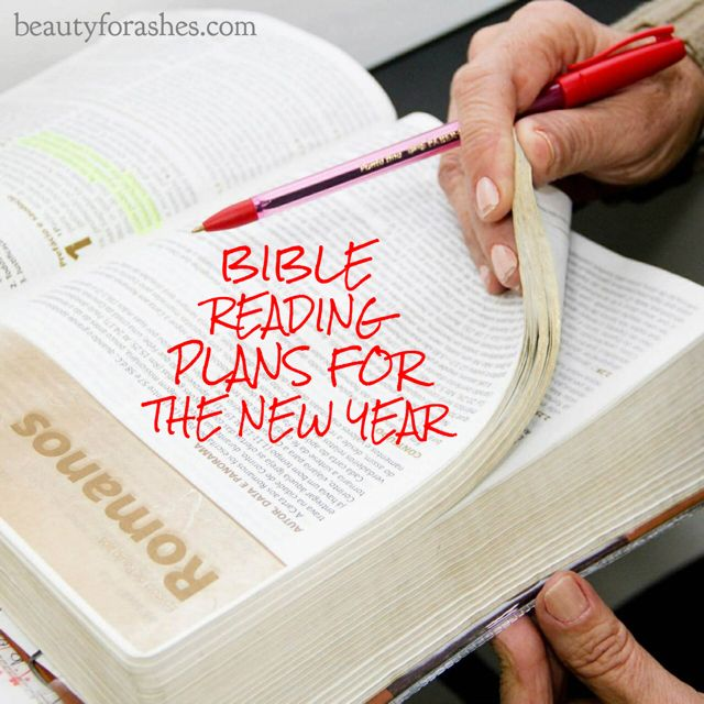 Bible reading plans for the New Year by Aldyth Thomson.