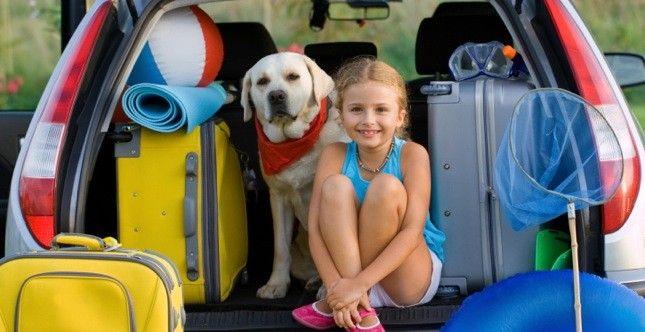 #Animali in #vacanza, consigli per il viaggio @greenpinkorg