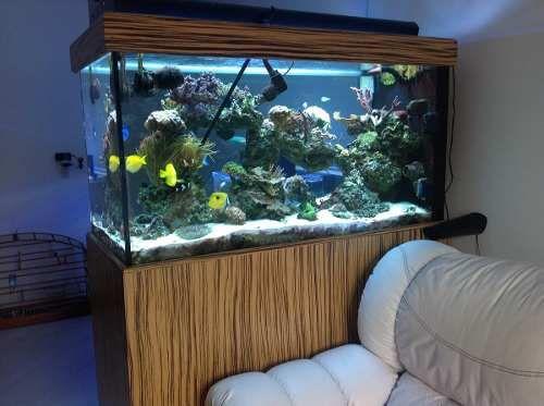 aquario marinho completo 130x60x70 15mm cristal extra claer.