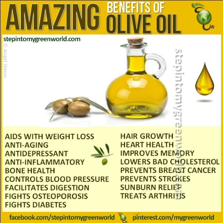 olive oil history and benefits Now that you know all about the history of olive oil, its health benefits, cooking applications, and so much morehow about some fun facts associated with the olive tree and the oil those miraculous fruits produce.
