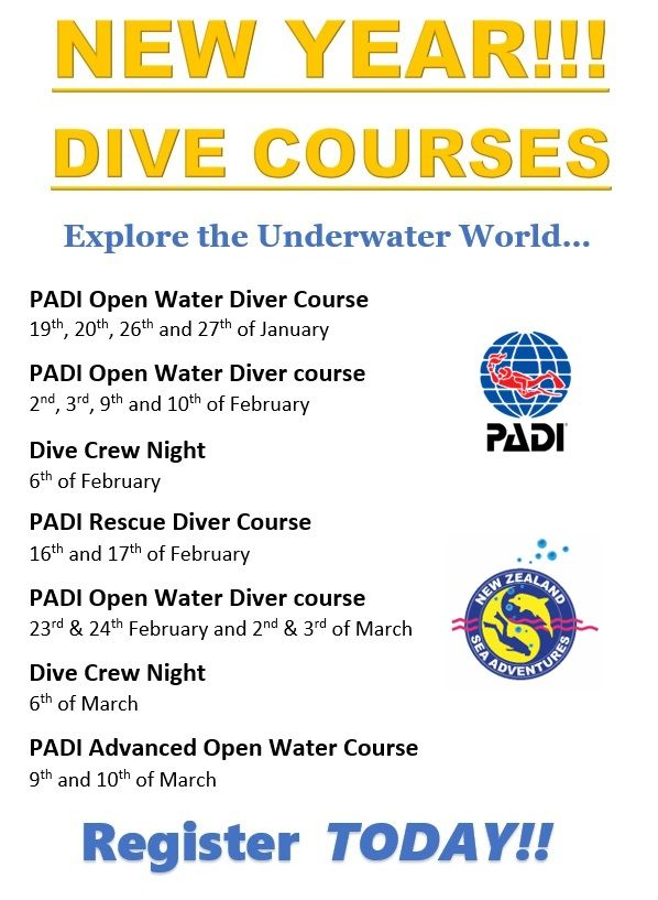 Take A Dive Course In The New Year Open Water Diver Advanced