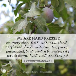 Image result for 2 corinthians 4:9 tree