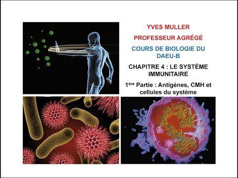 Chapitre 6 - 1ère Partie : Le système endocrinien - Cours de Biologie du DAEU-B - YouTube