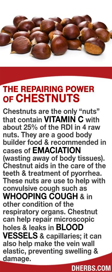 "Chestnuts are the only ""nuts"" that contain vitamin C with about 25% of the RDI in 4 raw nuts. They are recommended in cases of emaciation (wasting away of body tissues). Chestnut aids in the care of the teeth & treatment of pyorrhea. These nuts are use to help with  convulsive cough such as whooping cough & in other condition of the respiratory organs. Chestnut can help repair microscopic holes & leaks in vessels & capillaries; also helps make the vein wall elastic, preventing swelling…"