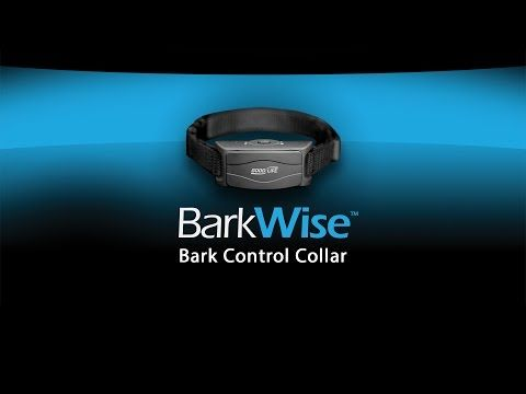 ▶ BarkWise - Complete training for your dog wherever he goes - YouTube #barking #dogs #training