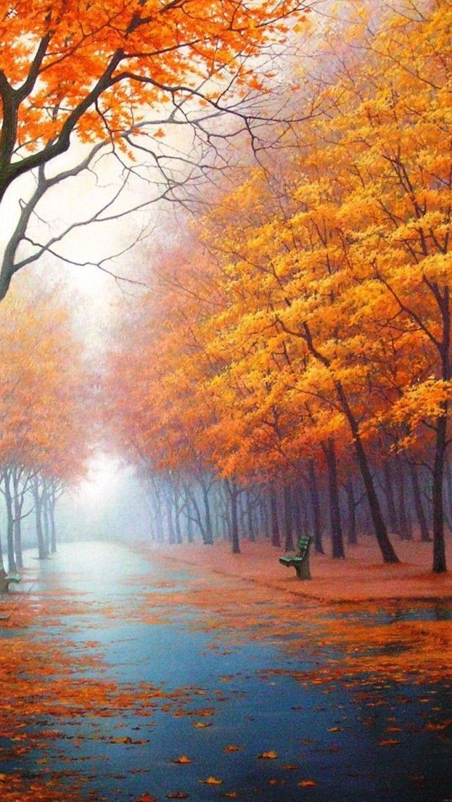 Falling Leaves Wallpaper Live 1517 Best Fall Scenes Images On Pinterest Autumn Leaves