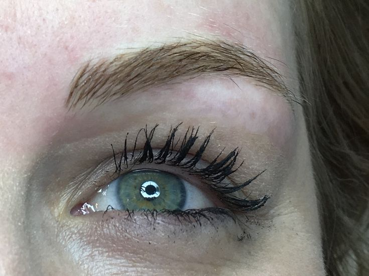Beautiful blonde brows without the need for pencil