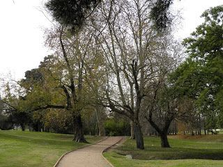 Los colores de otoño - mayo 2012.